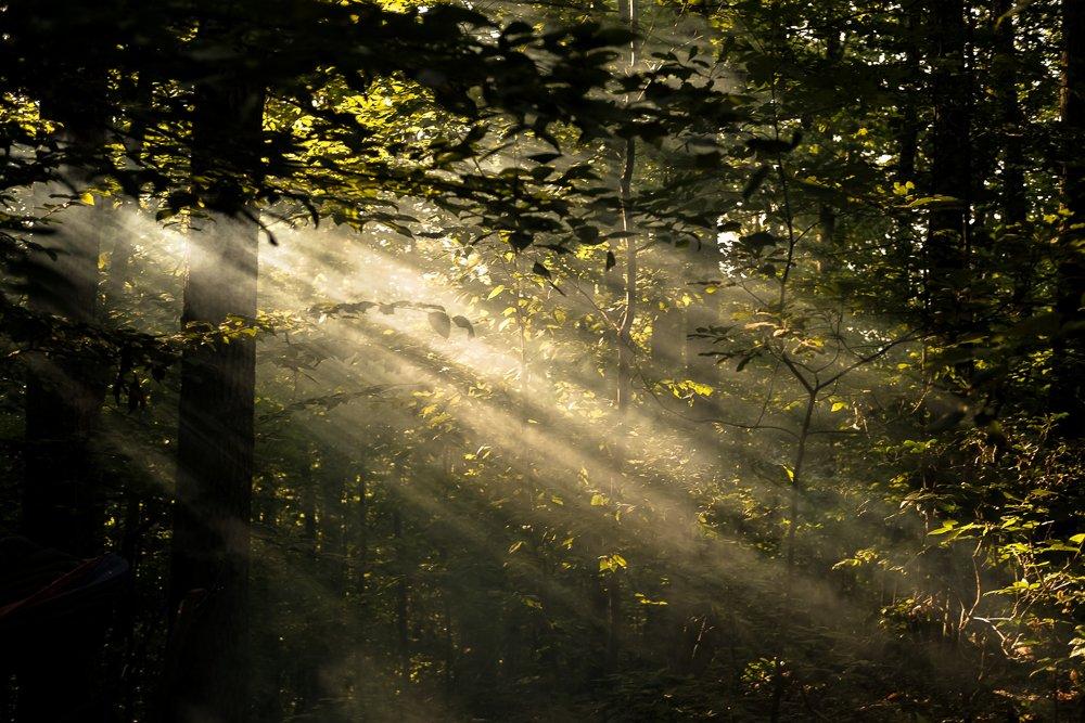 Gérer la lumière - cours de photographie